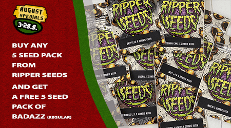 Ripper Seeds Special Offer