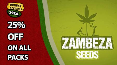 Zambeza Seeds Special Offer