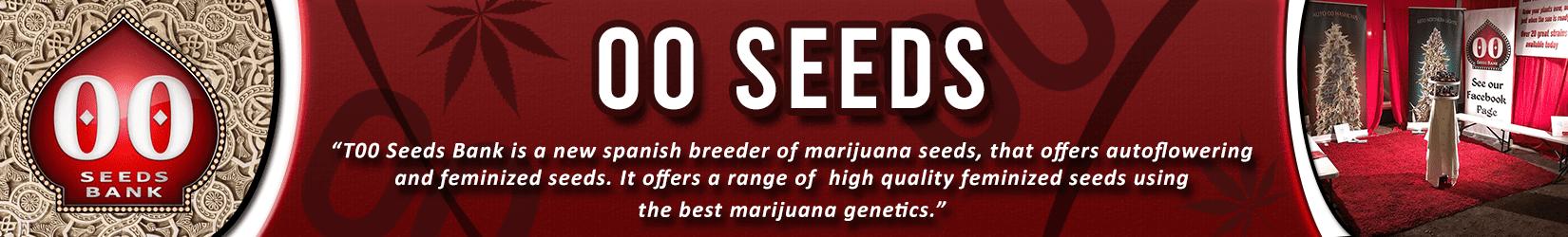 Cannabis Seeds Breeder - 00 Seeds