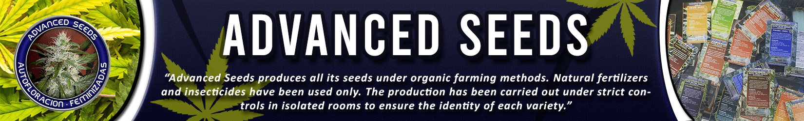 Cannabis Seeds Breeder - Advanced Seeds
