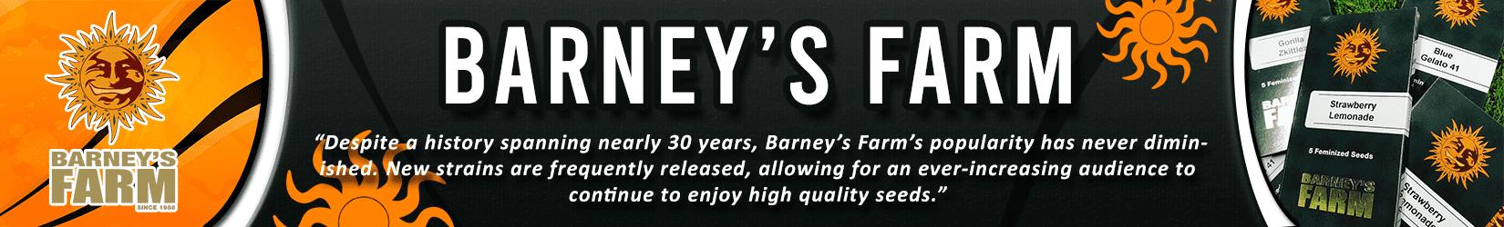 Cannabis Seeds Breeder - Barnys Farm