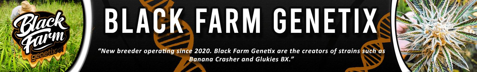 Cannabis Seeds Breeder - Black Farm Genetix
