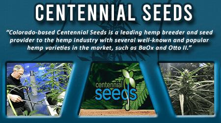 Cannabis Seeds Breeder - Centennial Seeds
