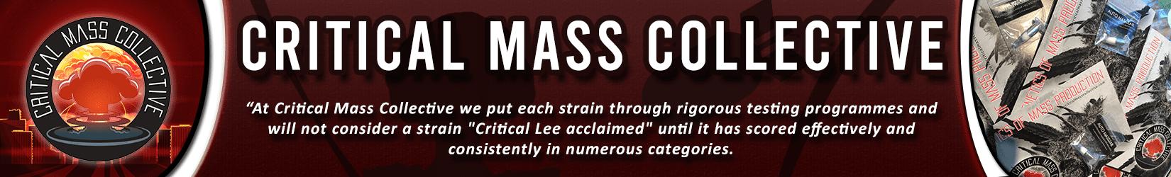 Cannabis Seeds Breeder - Critical Mass Collective
