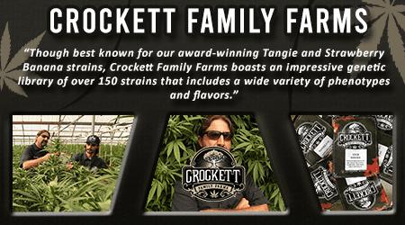 Cannabis Seeds Breeder - Crockett Family Farms