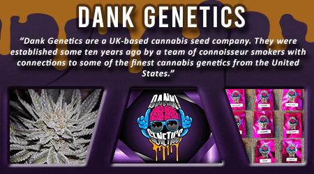 Cannabis Seeds Breeder - Dank Genetics