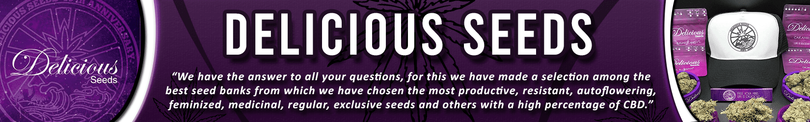 Cannabis Seeds Breeder - Delicious Seeds