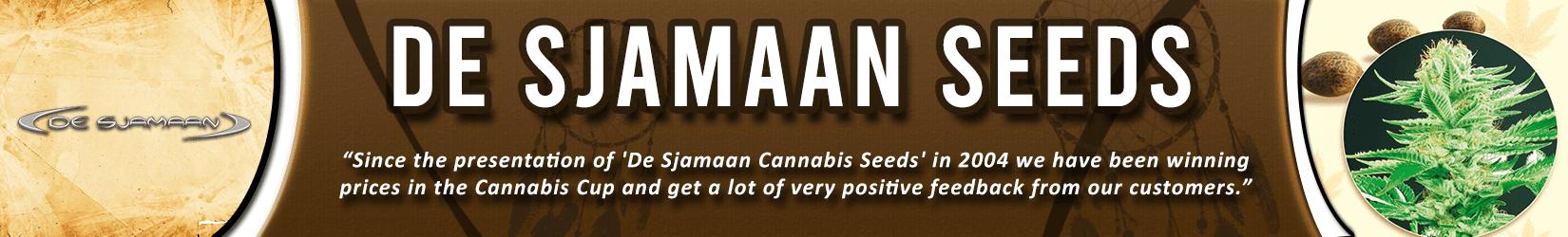 Cannabis Seeds Breeder - De Sjamaan Seeds