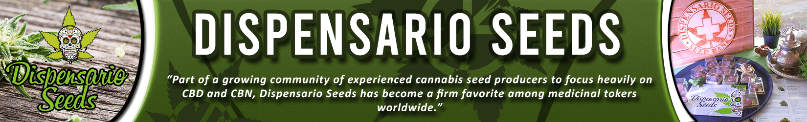 Cannabis Seeds Breeder - Dispensario