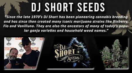 Cannabis Seeds Breeder - DJ Short Seeds