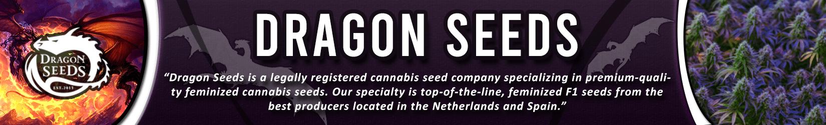 Cannabis Seeds Breeder - Dragon Seeds