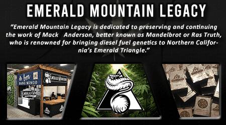Cannabis Seeds Breeder - Emerald Mountain Legacy