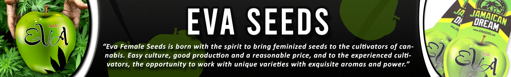 Cannabis Seeds Breeder - Eva Seeds