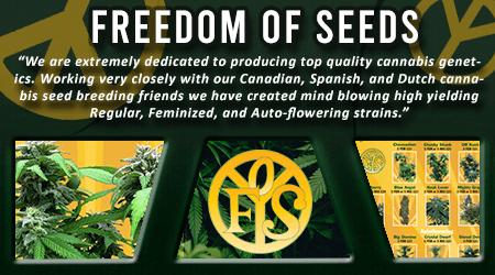 Cannabis Seeds Breeder - Freedom Of Seeds