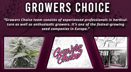 Cannabis Seeds Breeder - Growers Choice