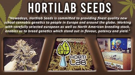 Cannabis Seeds Breeder - Hortilab Seeds