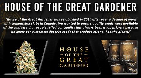 Cannabis Seeds Breeder - House Of The Great Gardener