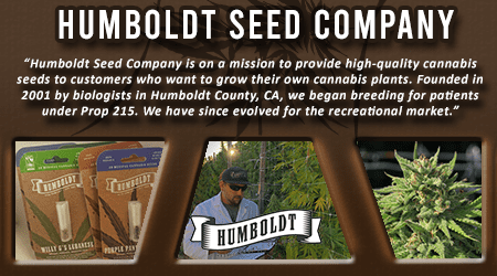 Cannabis Seeds Breeder - Humboldt Seed Company