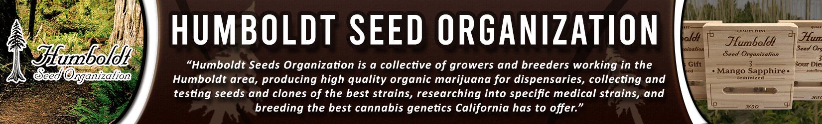 Cannabis Seeds Breeder - Humboldt Seed Organization