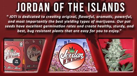 Cannabis Seeds Breeder - Jordan Of The Islands