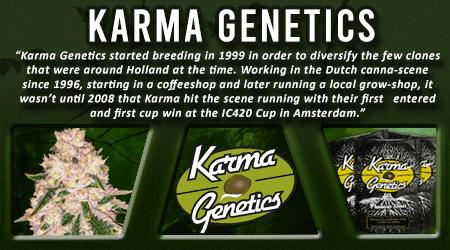 Cannabis Seeds Breeder - Karma Genetics