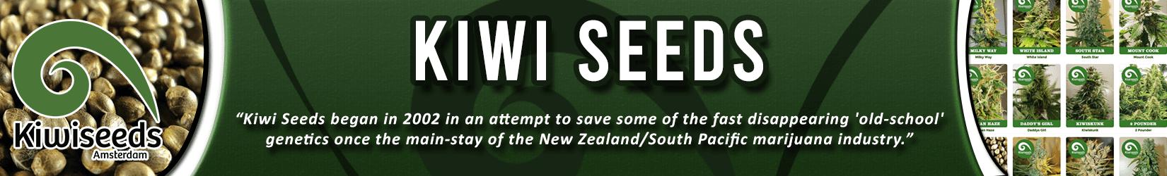 Cannabis Seeds Breeder - Kiwi Seeds