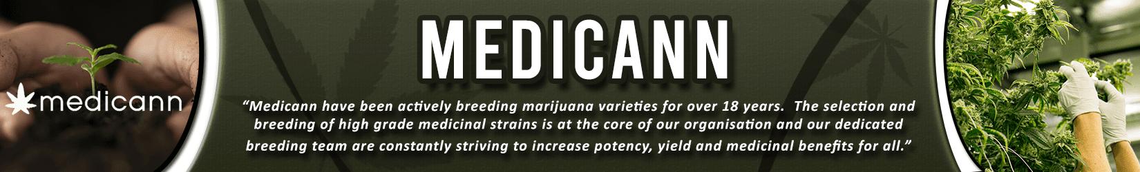 Cannabis Seeds Breeder - Medicann