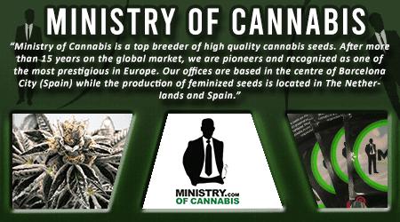 Cannabis Seeds Breeder - Ministry Of Cannabis