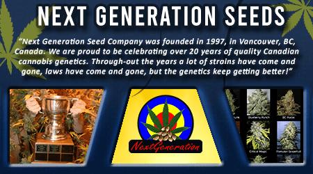 Cannabis Seeds Breeder - Next Generation Seeds