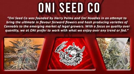 Cannabis Seeds Breeder - Oni Seed Co