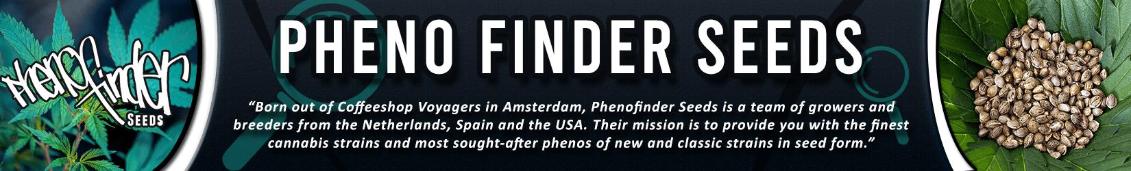 Cannabis Seeds Breeder - Pheno Finder Seeds