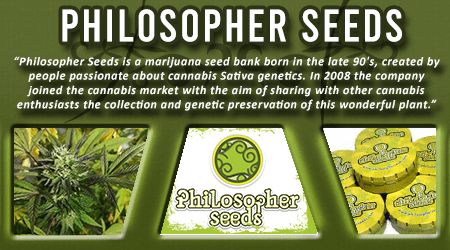 Cannabis Seeds Breeder - Philosopher Seeds