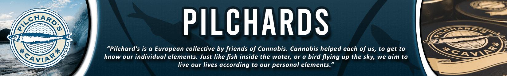Cannabis Seeds Breeder - Pilchards