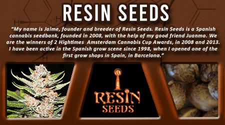 Cannabis Seeds Breeder - Resin Seeds
