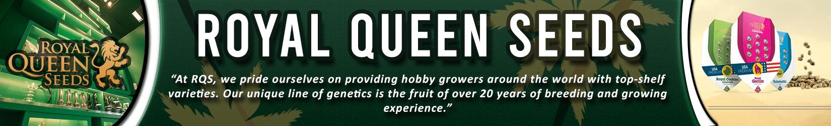 Cannabis Seeds Breeder - Royal Queen Seeds