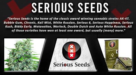 Cannabis Seeds Breeder - Serious Seeds