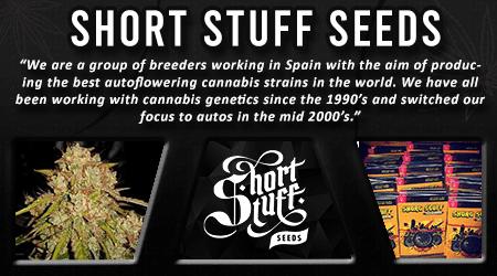 Cannabis Seeds Breeder - Short Stuff Seeds