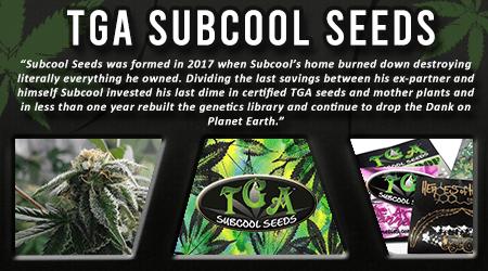 Cannabis Seeds Breeder - TGA Subcool Seeds