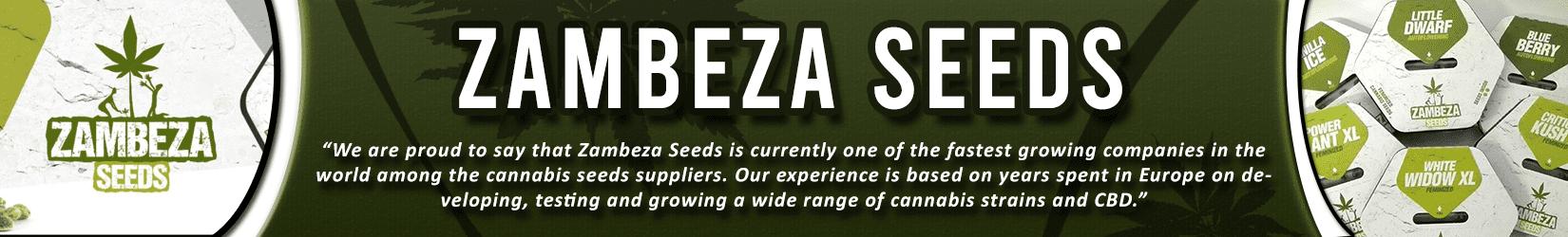 Cannabis Seeds Breeder - Zambeza Seeds