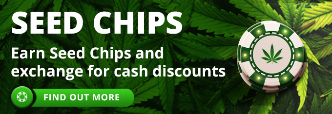 Earn cannabis seeds chips