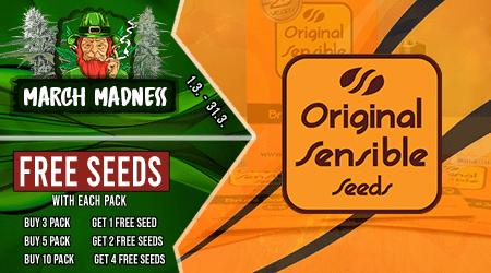 Original Sensible Cannabis Seeds Discount