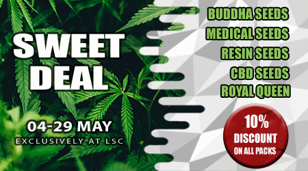 Sweet Cannabis Seeds Deals in May