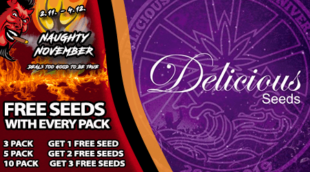 Delicious Seeds Special Offer