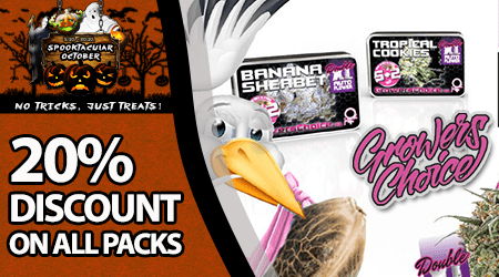 Growers Choice Seeds Special Offer