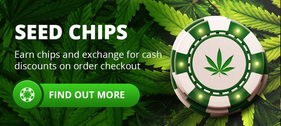 Earn Cannabis Seeds Chips